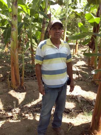Manuel Enrique