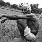 Help farmers in India