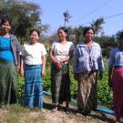 Yae Myet-3 (D) Village Group