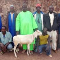Yienta Group