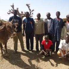 Badeya Group