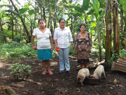photo of Flor De Dalia Group