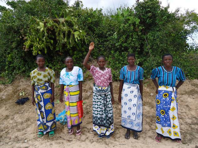 Kahaso's Group