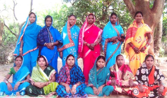 Maa Laxmi Naryani Shg Group