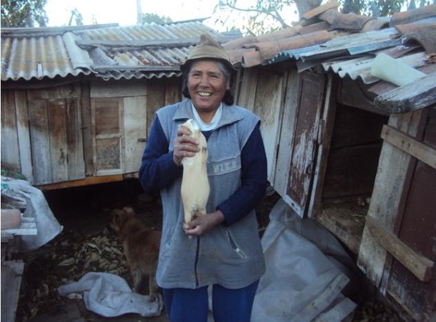 Gloria Amada