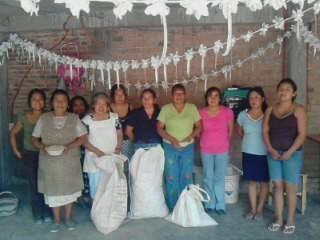 La Segunda Rosa Group