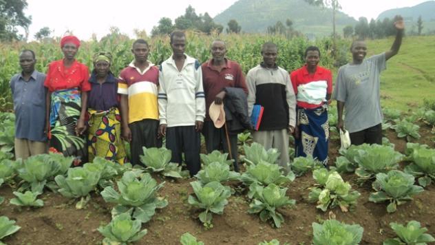 Vugukora B / Rbv Group