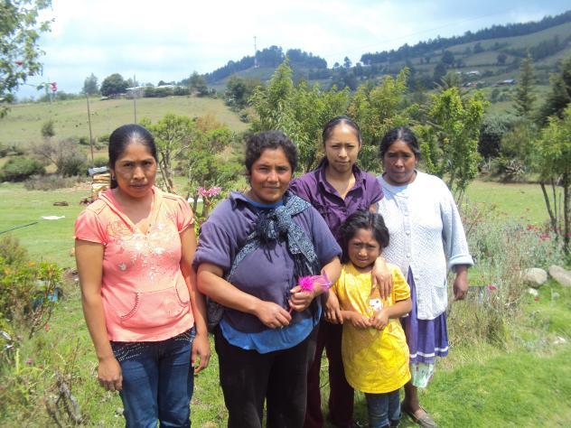 Chalmita Ganaderia Group
