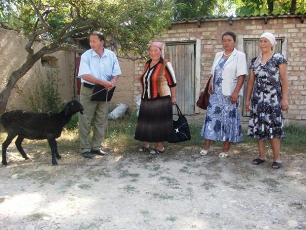 Gulmira's Group